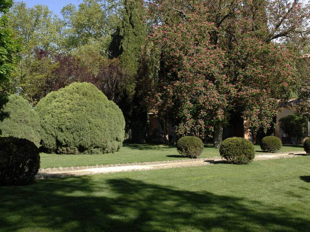 Cr ation jardin entretien espaces verts avignon m randal for Entretien jardin villeneuve les avignon